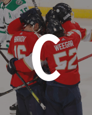 Florida Panthers Commitment